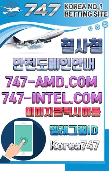 실시간 도메인 주소 안내